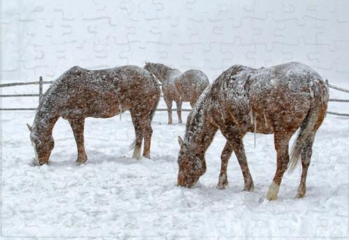 Montana blizzard jigsaw puzzle