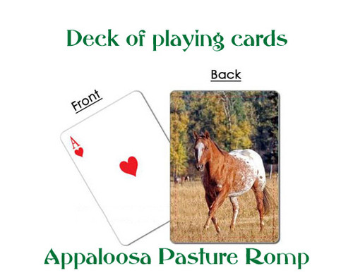 Appaloosa deck of playing cards