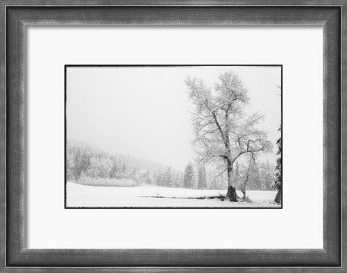 Snow blankets a Montana pasture