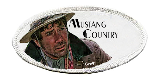 Robert Fuller-Iron on Patch-Mustang Country