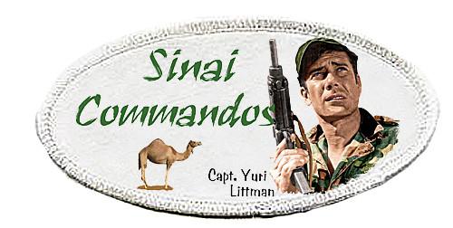 Robert Fuller-Iron on Patch-Sinai Commandos