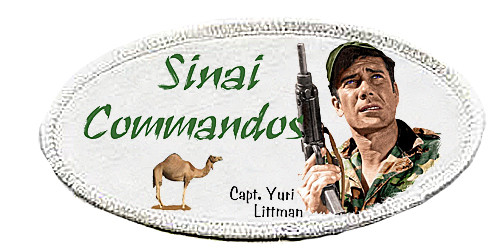 Robert Fuller-Iron on Patch-Sinai Commandos
