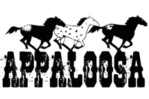 Horse Lover's Refrigerator Magnet -Appaloosa