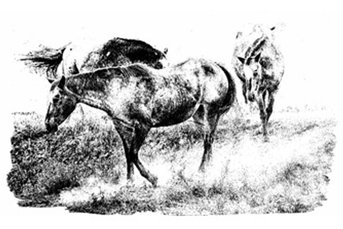 Artistic image of horses kicking up dust on a trail as they head to a ranch waterhole