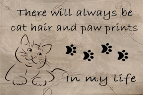 Refrigerator magnet for cat lovers - Cat hair and Paw prints