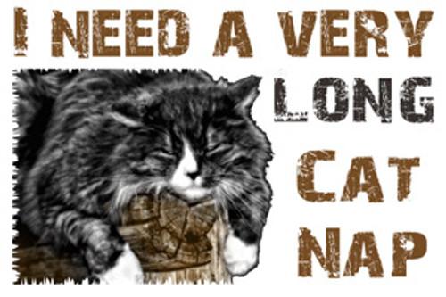 Cat lover's refrigerator magnet - Cat Nap