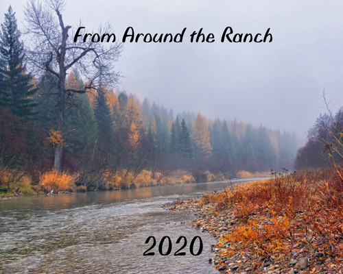2020 From Around the Ranch cover photo -  Trees in autumn drab  line the banks of the Fisher River