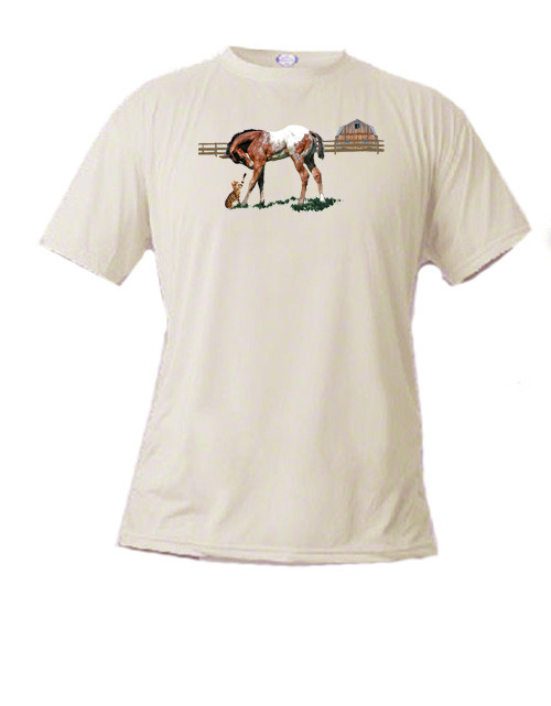 Youth t-shirt with a sweet image of an Appaloosa colt and a tabby cat - Friendship
