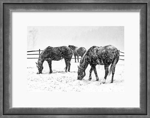 Art Print - Montana Blizzard - Ranch horses turn tail to a Montana blizzard