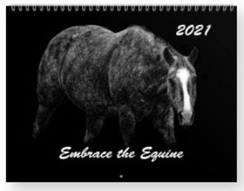 Embrace the Equine 2021 - black and white photography depicting beautiful photos  horses.