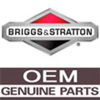 Product Number 698311 BRIGGS and STRATTON