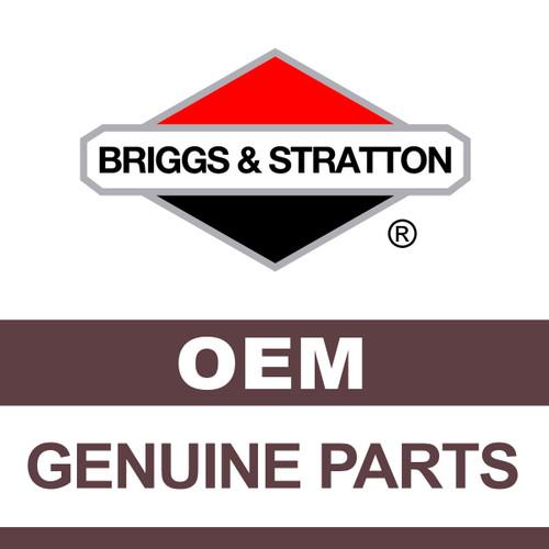 Part number 100011 Briggs & Stratton