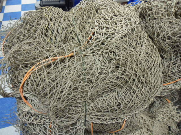 10′ x 100′ Authentic Fish Net