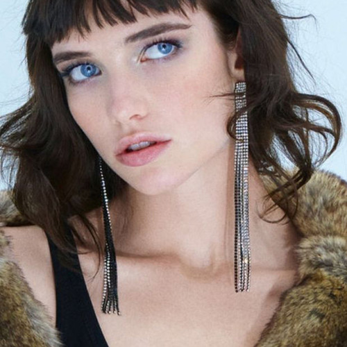 Long Tassel Rhinestone Earrings