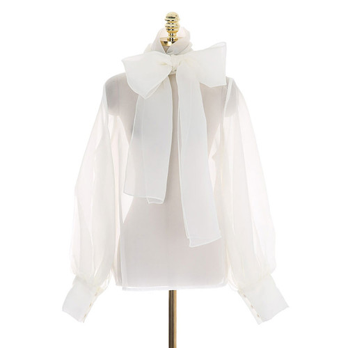 Over sized Bow Sheer Blouse