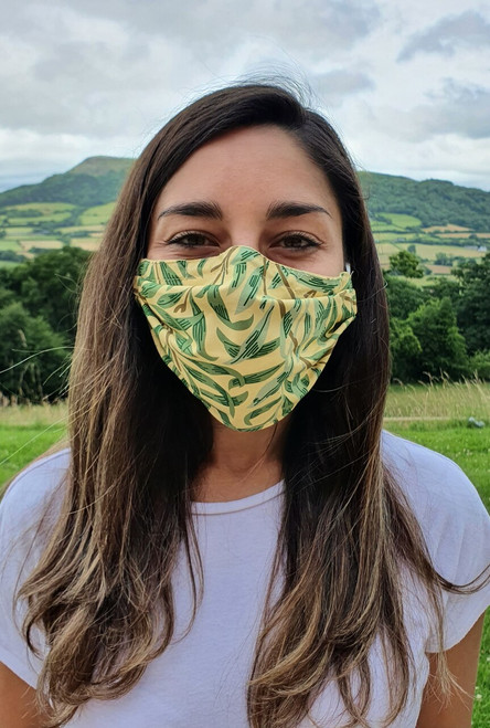 Willow Bough face mask with tapes