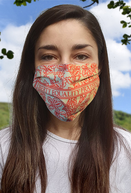 Liberty, Equality, Fraternity face mask with elastic