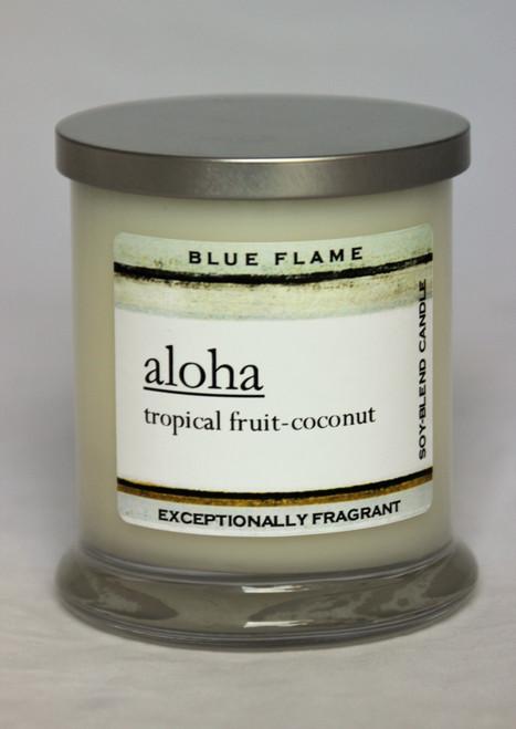 Aloha Silver Top