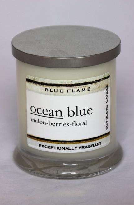 Ocean Blue Silver Top