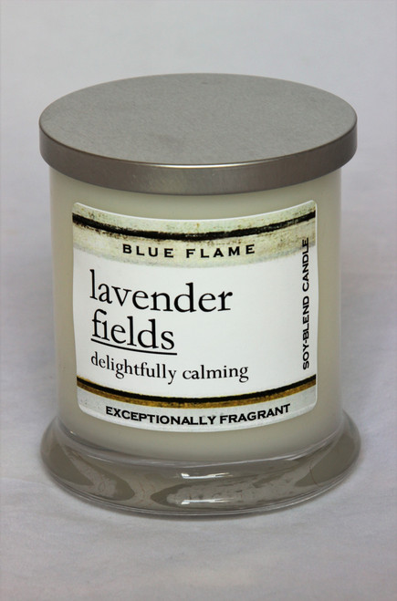 Lavender Fields Silver Top