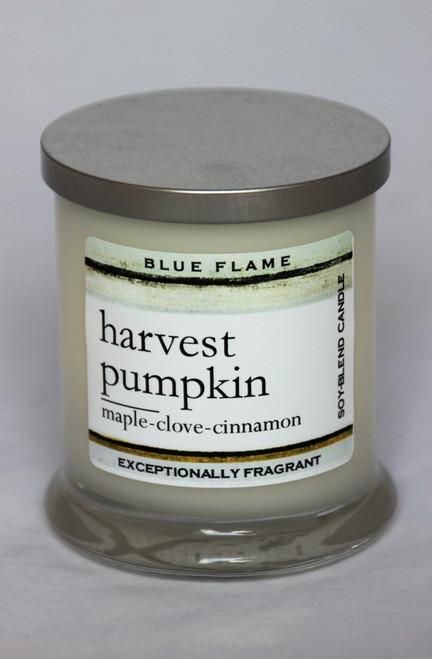 Harvest Pumpkin Silver Top