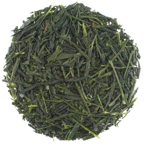 Shincha Hashiri 2020 Japanese Green Tea