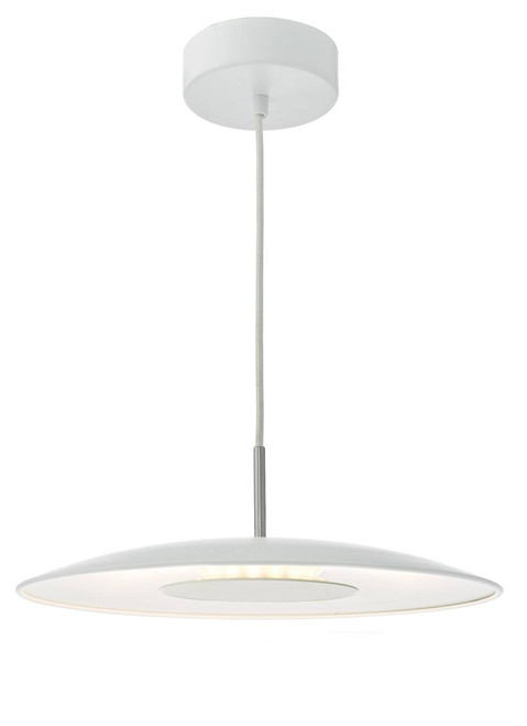 Enoch White with Stainless Steel LED Pendant Light