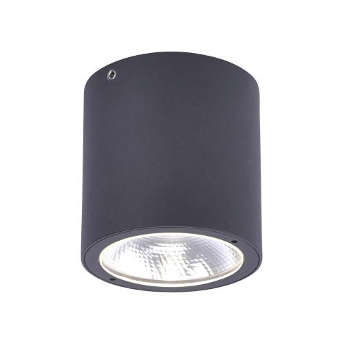 Paul Neuhaus GEORG Anthracite Cylinder Outdoor Surface Ceiling Light