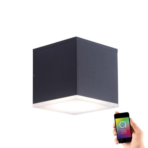 Paul Neuhaus Q-ALBERT 2 Light Anthracite Smart IP65 Outdoor LED Wall Light