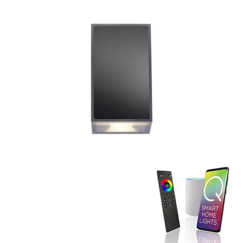 Paul Neuhaus Q-DARWIN 2 Light Anthracite Smart Outdoor LED Wall Light