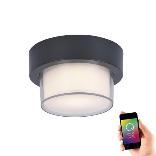 Paul Neuhaus Q-ERIK Anthracite Cylinder Smart LED Outdoor Wall or Ceiling Light