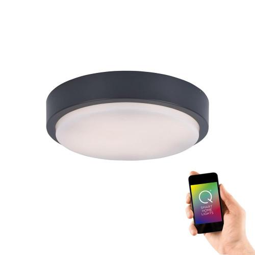 Paul Neuhaus Q-LENNY Anthracite Circular IP65 Smart LED Ceiling Light