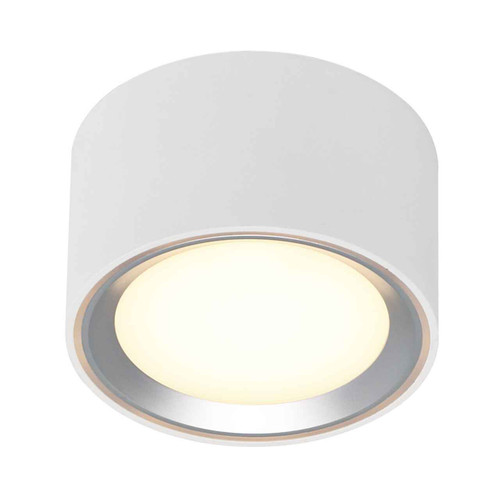 Fallon White/Brushed Steel LED Mounted Ceiling Spotlight