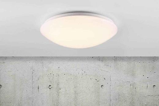 Ask 36 LED White with Matt White Glass Ceiling Light