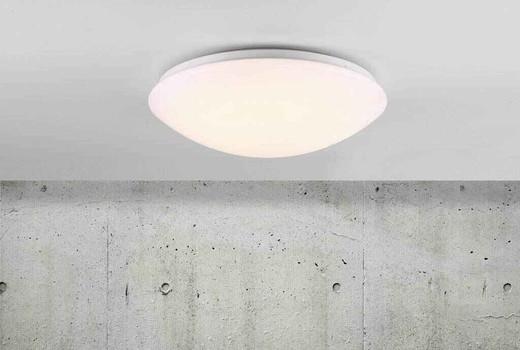 Ask 36 LED Sensor White with Matt White Glass Ceiling Light