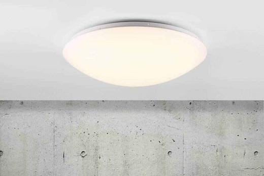 Ask 41 LED White with Matt White Ceiling Light