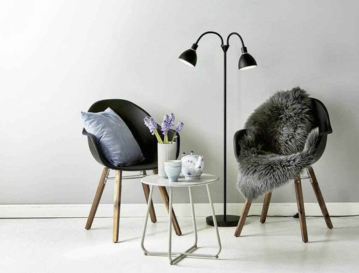 Ray Twin Headed Black Floor Lamp
