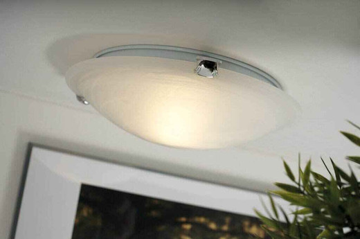 Petri 30 White with Alabaster White Glass Ceiling Light