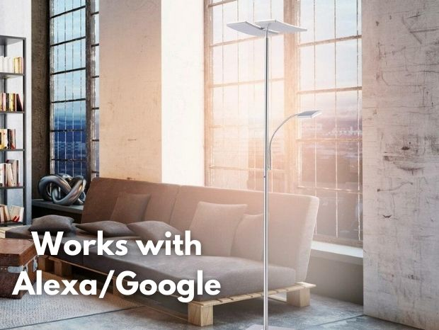 works with alexa/google
