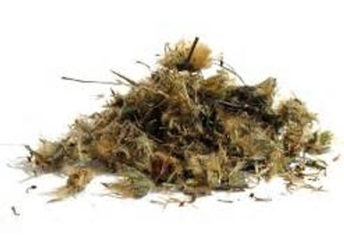 Arnica Herb Oil