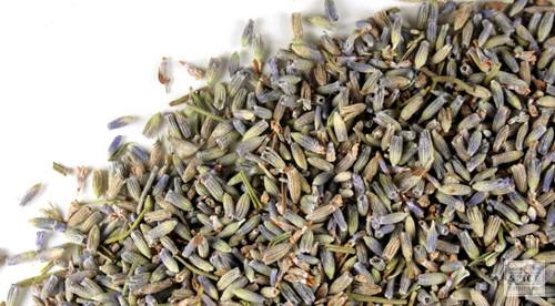 Lavender Buds (Standard)