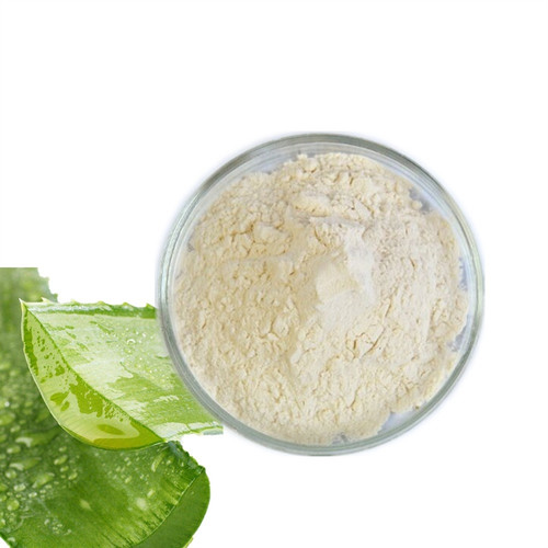 Aloe Powder Organic