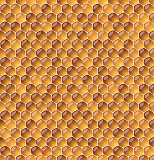 Honey Flavor Oil