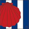 6x6 Tile Nautical Seashell 8081A