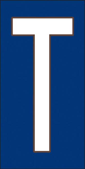 3x6 Tile House Letter T White on Cobalt