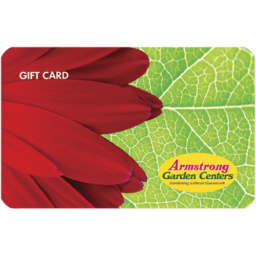 Digital Red Flower eGift Card