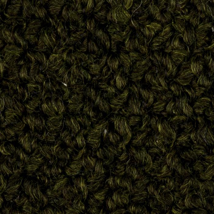 Lotti | Olive