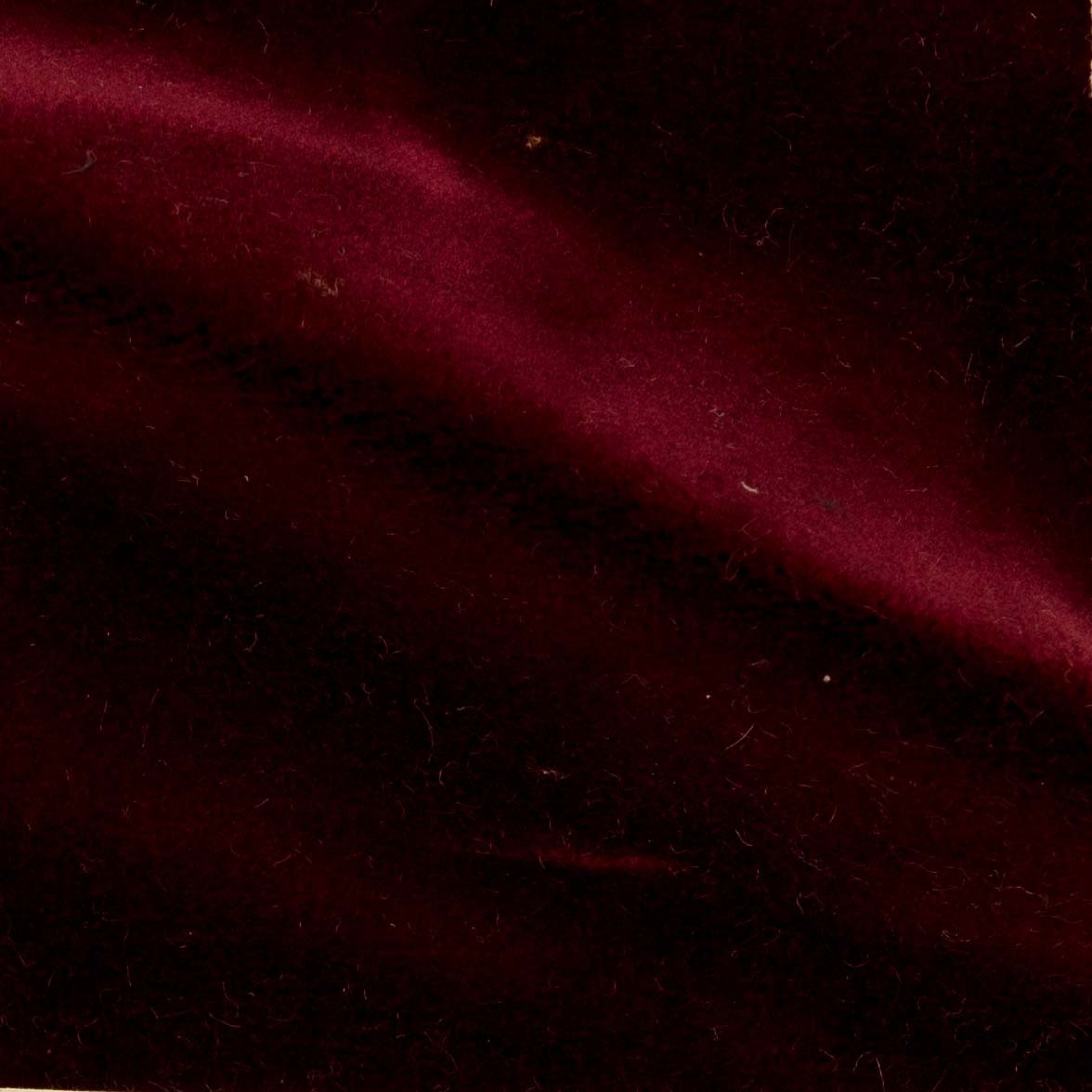Reed | Crimson