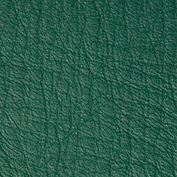 Bison | Emerald