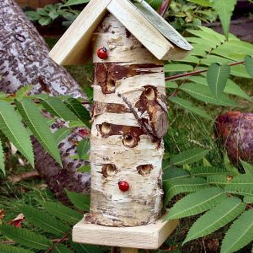 Ladybird / Insect Tower
